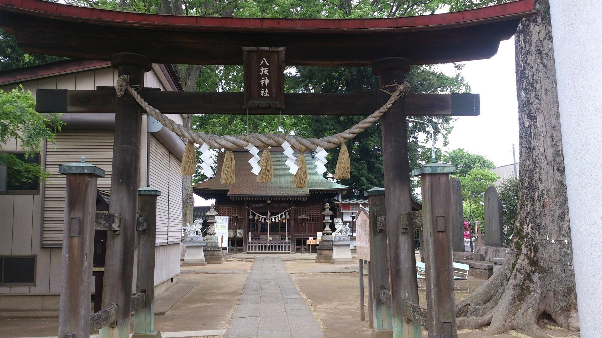 神社 守谷 八坂 【天神神社】森の中にある神秘的な神社(守谷市)